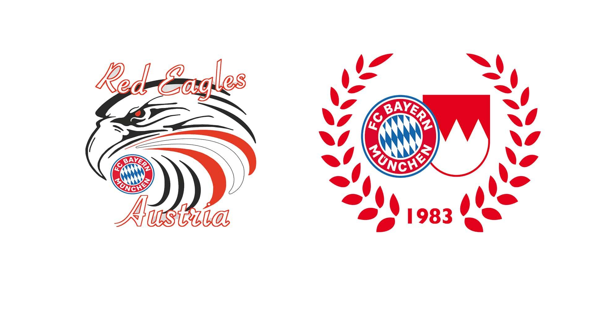 Online-Club-Soccer-Champion-Trophy-das-gro-e-l-nder-bergreifende-Spiel-der-FC-Bayern-Fanclubs